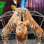 "GIVEAWAY:  Ringling Bros. and Barnum and Bailey presents ""DRAGONS"""