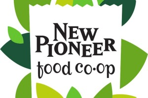 newpioneer3