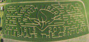 Colony Corn Maze