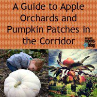 apple orchards and pumpkin patches guide