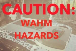 WAHMHazards1