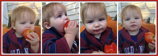 eating seasonally 5 collage