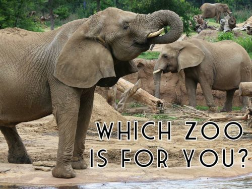 zoo near iowa city zoos