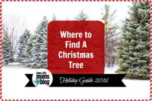 where-to-find-a-christmas-tree-farm-holiday-guide-3