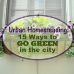 Urban Homesteading: 15 Ways to Go Green in the City