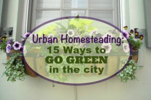 urban homesteading go green city