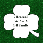 Our Top 7 Reasons We Are a 4-H Family