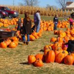 Guide to Fall Family Events in the Iowa City Area