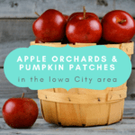 Guide to U- Pick: Apple Orchards and Pumpkin Patches near Iowa City