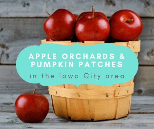 apple orchards and pumpkin patches iowa city