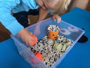 sensory bin box play