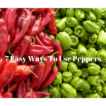 Recipe Roundup: Peppers Edition–7 Easy Ways To Use Up Peppers