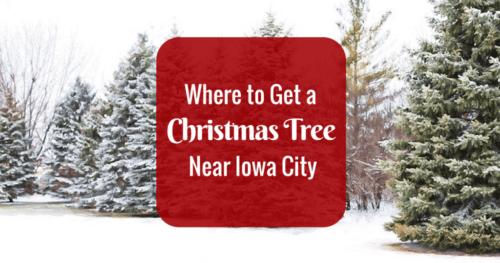 Barnes Christmas Tree Farm