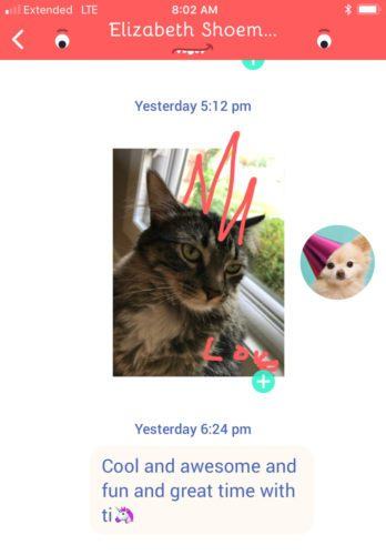 Staying in Touch Junior Style: A Safe Instant Messenger for Kids