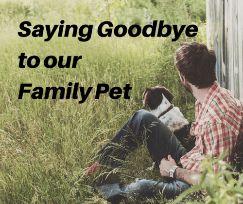 Processing Grief and Death: Saying Goodbye to Our Family Pet
