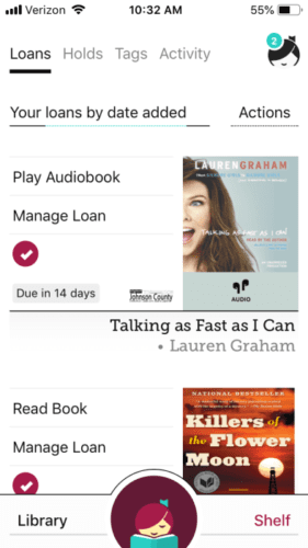 Image of an audio-book and e-book on Libby