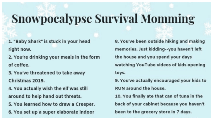Snow Day Survival Momming Snowpocolypse Game