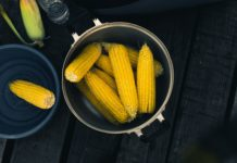 sweet corn recipes - chowder and cornbread