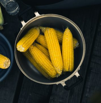 sweet corn recipes - chowder and cornbread