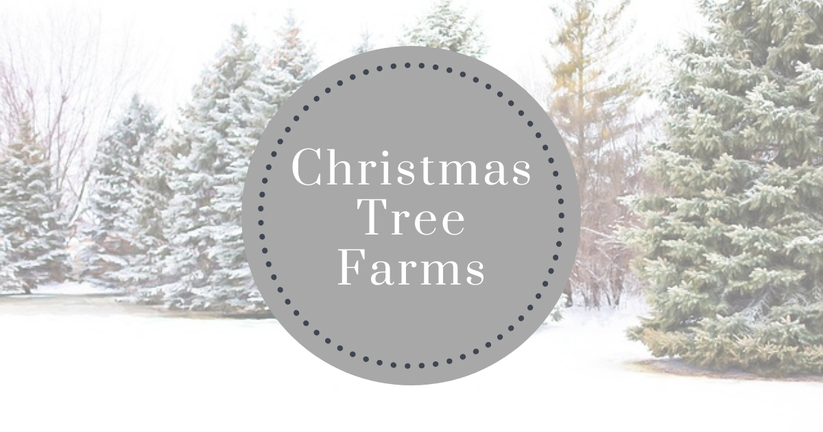 Christmas tree farms near Iowa City