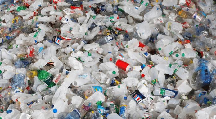 Single Use Plastics