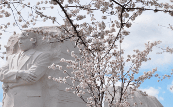 Dr. King's Momumnet in Washington D.C.