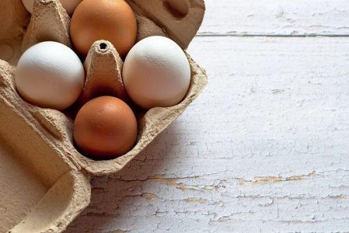 fresh eggs: A Guide to Iowa City Area Farmer's Markets