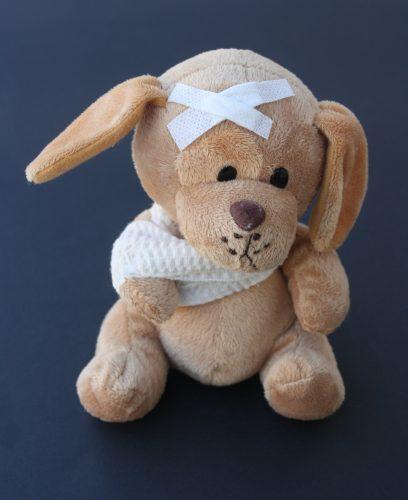 An image of a stuffed dog: Nursemaid's Elbow