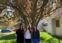 three young women in front of a tree