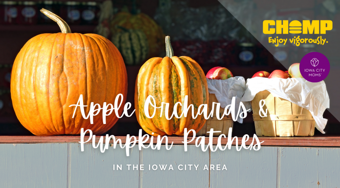 Apple Orchards and Pumpkin Patches in the Iowa City Area